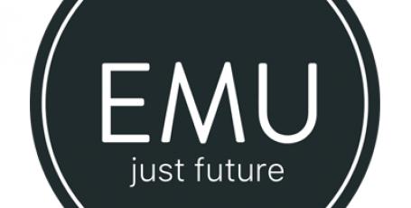 EMU — интерактивное пользование услугами в реальном времени